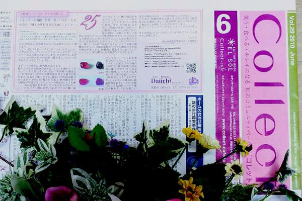 コレット2010/6月号