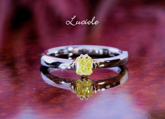 luciole20100906-1